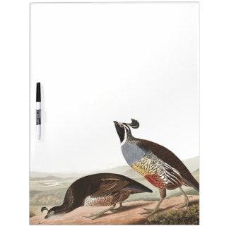 Audubon Partridge Birds Wildlife Dry Erase Board