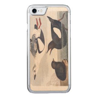 Audubon Plate 219 Black Guillemot Carved iPhone 7 Case