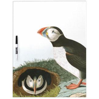 Audubon Puffin Birds Wildlife Dry Erase Board
