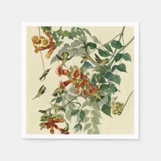 Audubon Ruby Throated Hummingbirds Disposable Napkins