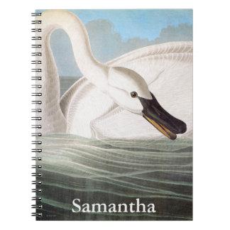 Audubon: Trumpeter Swan Notebooks