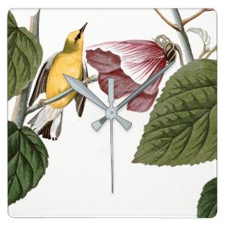 Audubon Warbler Bird Hibiscus Flower Wall Clock