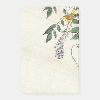 Audubon Warbler Bird Wildlife Post It Notes