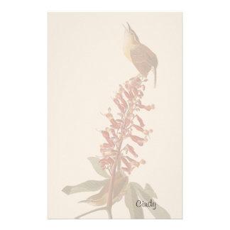 Audubon Wren Birds Animals Wildlife Stationery