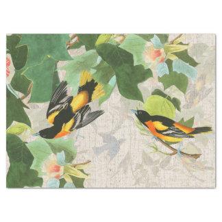 Audubons Birds Wildlife Animal Floral Tissue Paper