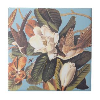 Audubon's Black Billed Cuckoo Tile