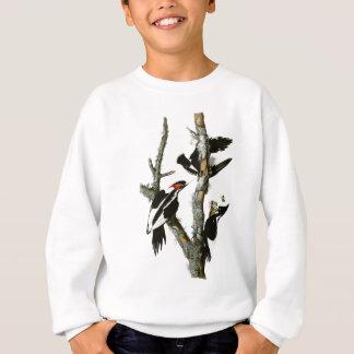 Audubon's Ivory-billed Woodpecker Sweatshirt