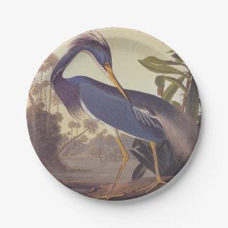 Audubon's Louisiana Heron or Tricolored Heron 7 Inch Paper Plate