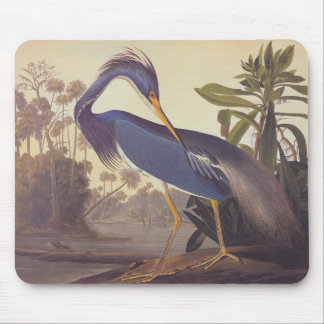 Audubon's Louisiana Heron or Tricolored Heron Mouse Pad