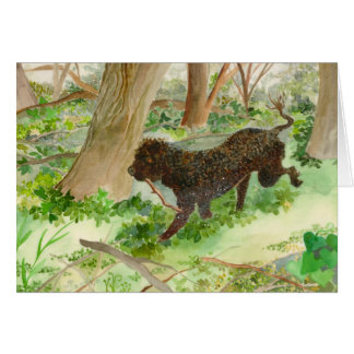 Auggie the Portuguese Water Dog Greeting Card