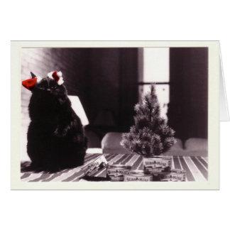 Auggie's Christmas Card