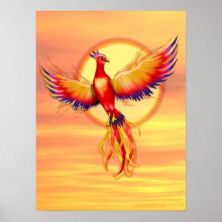 Augmentation de Phoenix Affiches