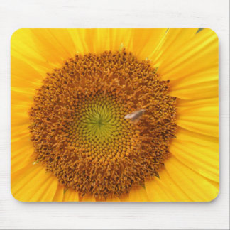 August sunflower mouse pad