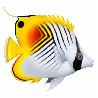 Auriga Threadfin Butterfly Fish Pin Photo Sculpture Button