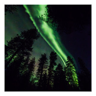 Aurora borealis in Finnish Lapland Perfect Poster