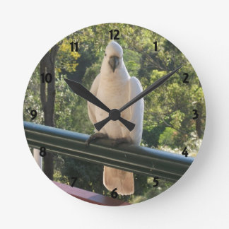 Aussie Cockatoo in Natural Environment Wall Clock