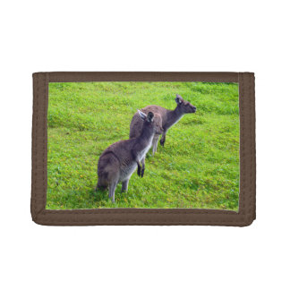 Aussie Grey Kangaroos On Green Grass, Trifold Wallet