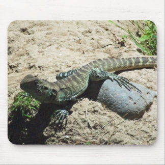 Aussie Lizard Mousepad