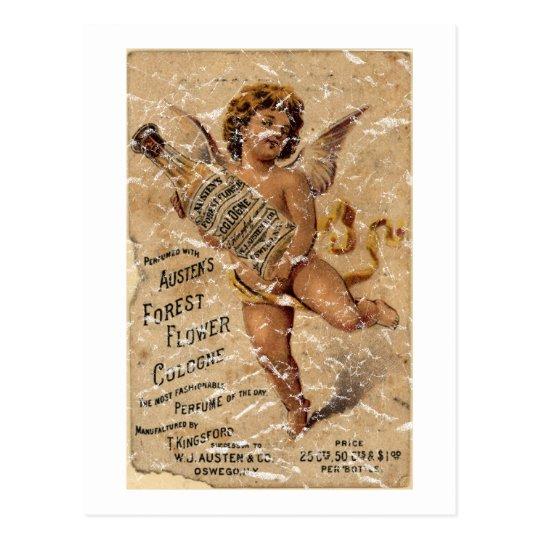 Austen's Forest Flower-1908 - distressed Postcard