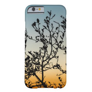 Austin Sunset in Winter Barely There iPhone 6 Case
