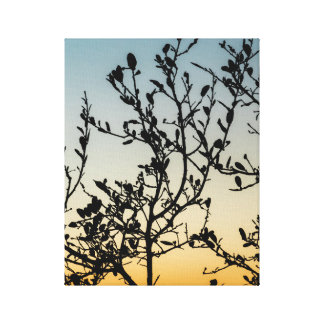Austin Sunset in Winter Canvas Print