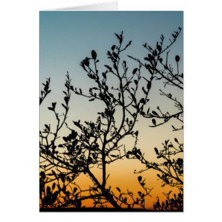 Austin Sunset in Winter Card