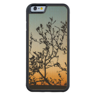 Austin Sunset in Winter Maple iPhone 6 Bumper