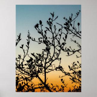 Austin Sunset in Winter Poster