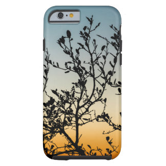 Austin Sunset in Winter Tough iPhone 6 Case