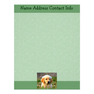 Austin The Golden Labrador Letterhead