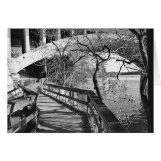 Austin, TX River Area Card