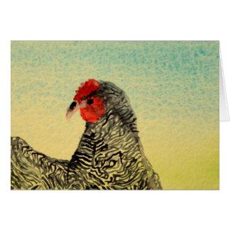 Austra White Chicken Card