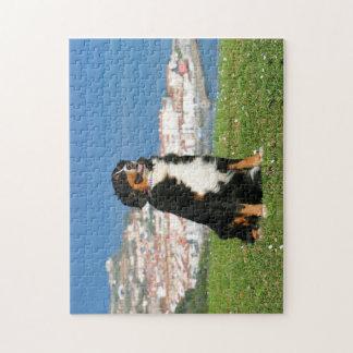 Austrailian Shepherd Jigsaw Puzzle