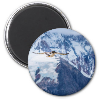Austral Patagonian Bird Flying 2 Inch Round Magnet