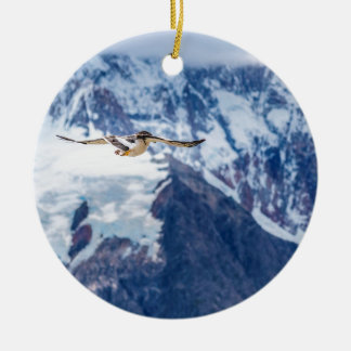 Austral Patagonian Bird Flying Ceramic Ornament