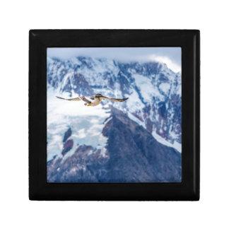 Austral Patagonian Bird Flying Gift Box