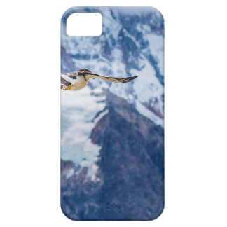 Austral Patagonian Bird Flying iPhone 5 Case