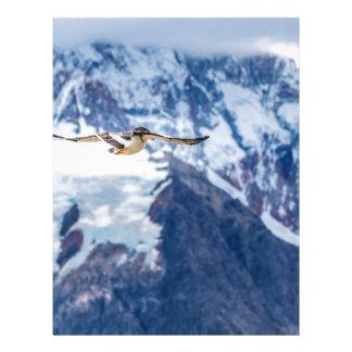 Austral Patagonian Bird Flying Letterhead