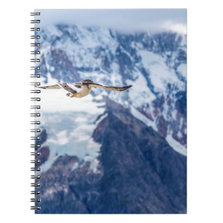 Austral Patagonian Bird Flying Spiral Notebooks