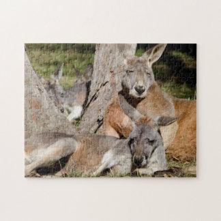 Australia, Adelaide. Cleland Wildlife Park 2 Jigsaw Puzzle