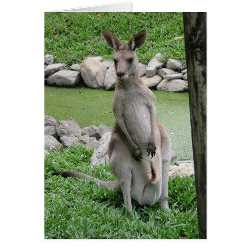 Australia Beckons Cards