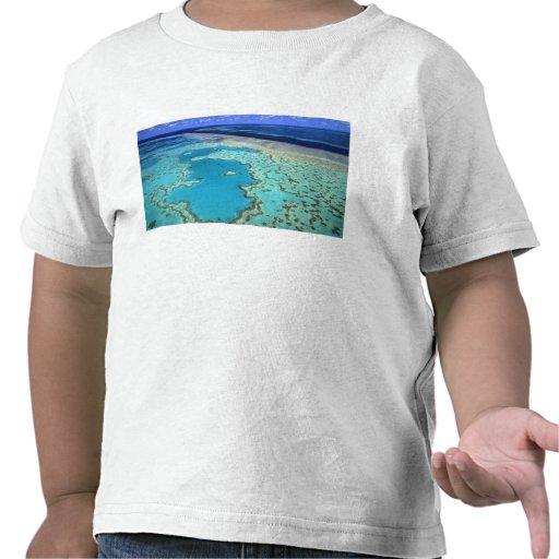 Australia - Queensland - Great Barrier Reef. 7 T-shirt