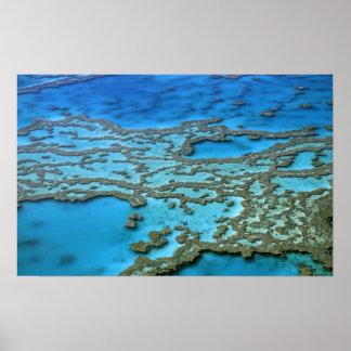 Australia - Queensland - Great Barrier Reef. Poster