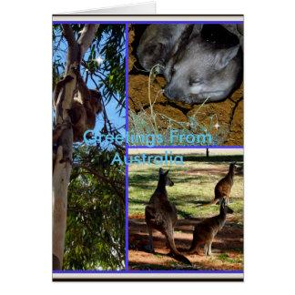Australian Animal Collage, Birthday Greeting Card