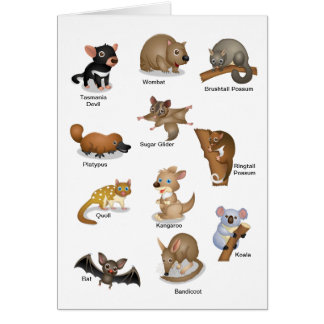 Australian Animal Greeting Card