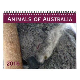 australian animals 2016 wall calendar