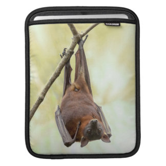 Australian bat up-side-down iPad sleeve