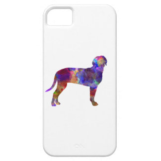 Australian Black and So Hound in watercolor iPhone 5 Cases