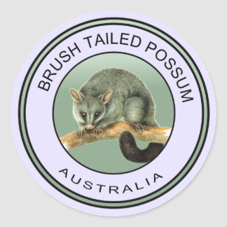 Australian brush tailed possum classic round sticker