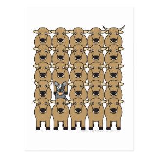 Australian Cattle Dog in the Herd Postcard